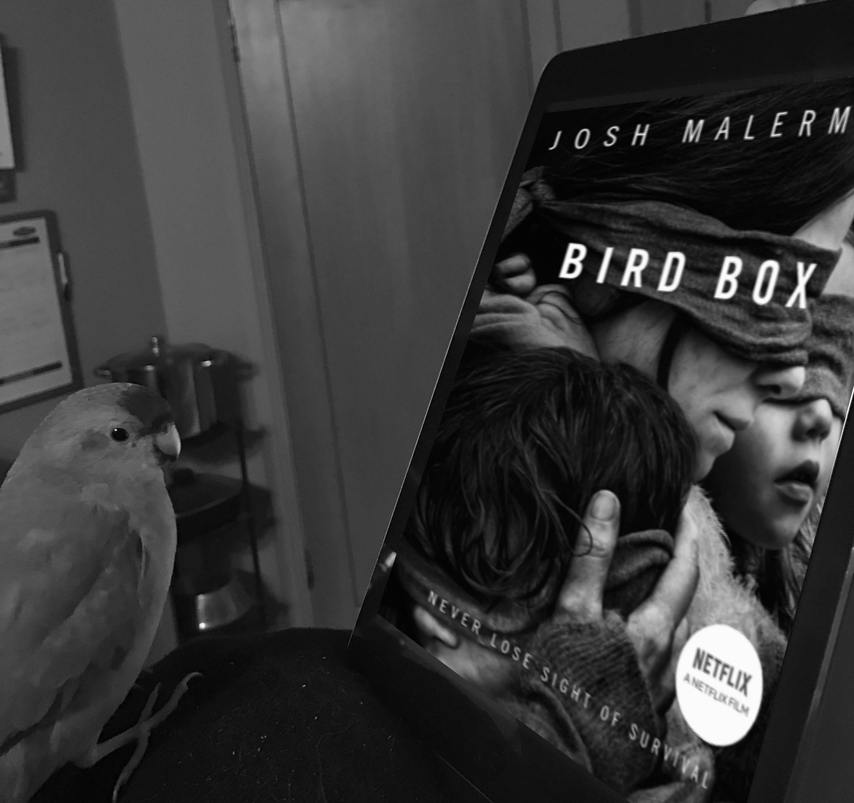 birdboxb&w2